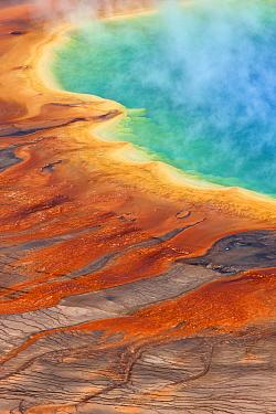 Grand Prismatic Pool, Midway Geyser Basin, Yellowstone National Park, Wyoming  -  Ingo Arndt