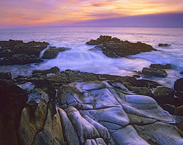 Wave hiting coastal rocks, Gerstle Cove, Salt Point State Park, California  -  Tim Fitzharris