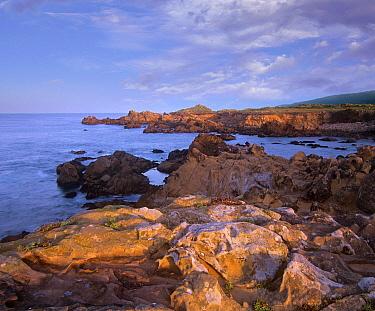 Rocky coastline, Gerstle Cove, Salt Point State Park, California  -  Tim Fitzharris