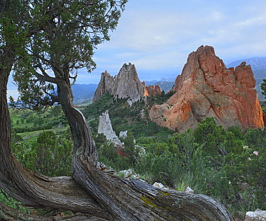 Gray Rock and South Gateway Rock, Garden of the Gods, Colorado  -  Tim Fitzharris