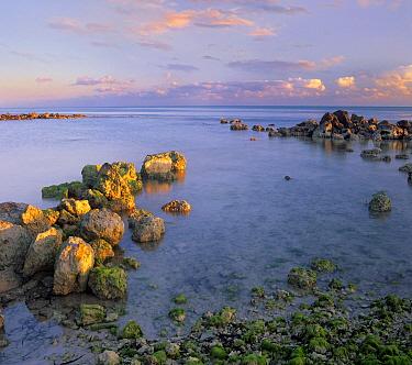Coastal rocks, Bahia Honda Key, Florida  -  Tim Fitzharris