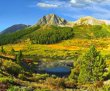 Pond and Green Mountain, Green Mountain National Forest, Colorado  -  Tim Fitzharris
