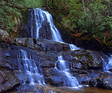 Waterfall, Laurel Creek, Great Smoky Mountains National Park, Tennessee  -  Tim Fitzharris