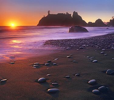 Ruby Beach, Olympic National Park, Washington  -  Tim Fitzharris