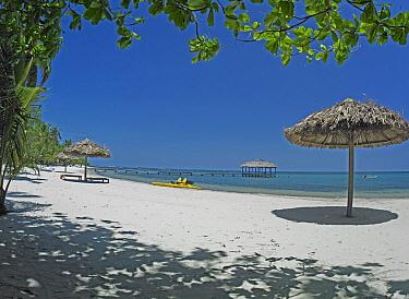 Resort, Palmetto Bay, Roatan Island, Honduras  -  Tim Fitzharris