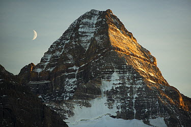 Crescent moon and summit of Mount Assiniboine, Mount Assiniboine Provincial Park, British Columbia, Canada  -  Kevin Schafer
