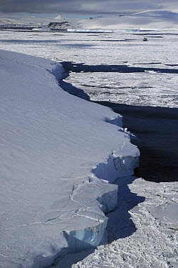 Ice shelf, Weddell Sea, Antarctic Peninsula, Antarctica  -  Hiroya Minakuchi