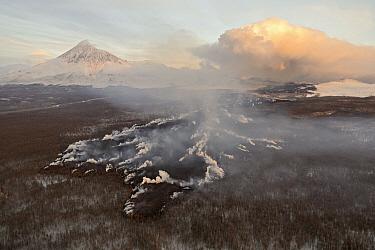 Lava flow burning forest, Tolbachik Volcano, Kamchatka, Russia  -  Sergey Gorshkov