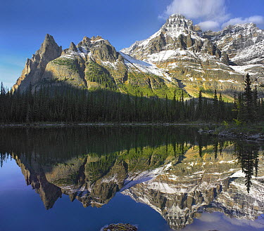 Cathedral Mountain and Mount Huber, Yoho National Park, British Columbia, Canada  -  Tim Fitzharris