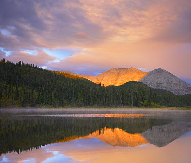 Mountain reflected in pond, Northern Rocky Mountain Provincial Park, British Columbia, Canada  -  Tim Fitzharris