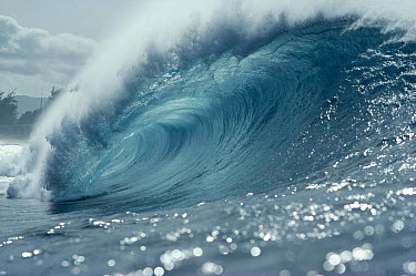 Waves, Pipeline, Hawaii  -  Bob Barbour