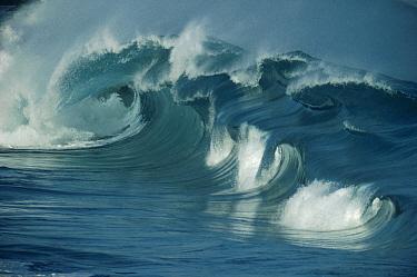 Breaking waves, Waimea shorebreak, North Shore, Oahu  -  Bob Barbour