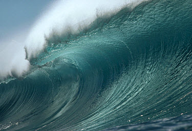 Wave ready to break  -  Bob Barbour