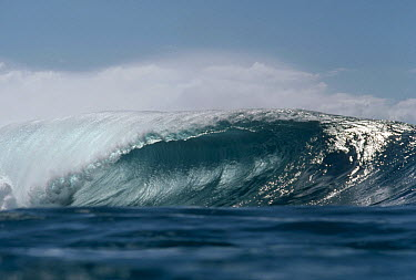 Breaking wave as seen from water level  -  Bob Barbour