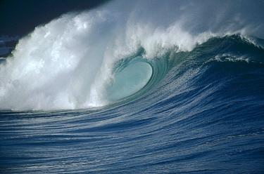 Breaking waves, Waimea shorebreak, Oahu, Hawaii  -  Bob Barbour