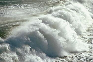 Wave breaks on sandy beach  -  Bob Barbour