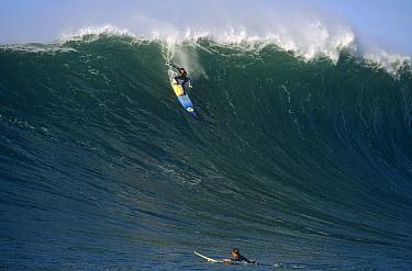 Surfer Jay Moriarty rides a Maverick wave, Half Moon Bay, California  -  Bob Barbour