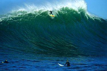 Jay Moriarity catching a ride at Mavericks, Half Moon Bay, California  -  Bob Barbour