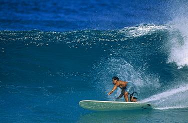 David Miyamoto, North Shore, Oahu, Hawaii  -  Bob Barbour