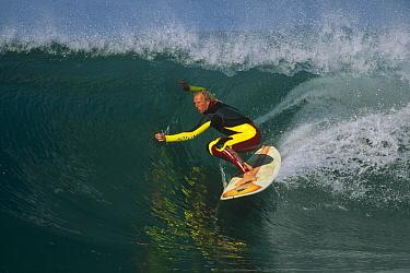 Terry Simms, December 1998, central coast, California  -  Bob Barbour
