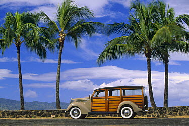 Right hand drive 1937 Ford Woodie, owned by Michael and Ilona Hemperly, Haleiwa, Oahu, Hawaii  -  Bob Barbour
