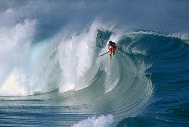 Clark Little, Waimea shorebreak, Oahu, Hawaii  -  Bob Barbour