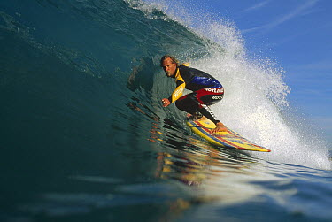 Terry Simms, October 1996, central coast, California  -  Bob Barbour