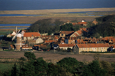 Windmill and buildings in village of Cley-next-the-sea, Norfolk, England  -  Michael & Patricia Fogden