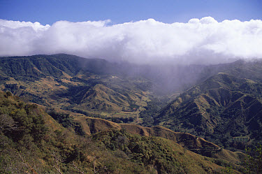 Deforested hills, Monteverde Cloud Forest Reserve, Costa Rica  -  Michael & Patricia Fogden