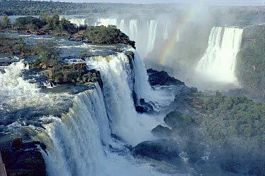 Iguacu falls as seen from the Brazilian side, Brazil and Argentina border  -  Michael & Patricia Fogden