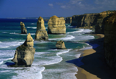 The Twelve Apostles, Port Campbell National Park, Victoria, Australia  -  Michael & Patricia Fogden