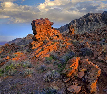 Rock formations, Muddy Mountains, Valley of Fire State Park, Nevada  -  Tim Fitzharris