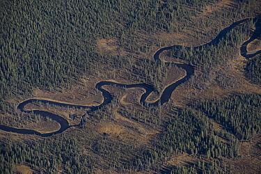 Winding creek flowing into the upper Copper River, Alaska  -  Michael Quinton