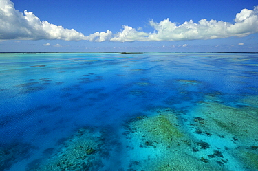 Aerial of tidal channel feeding the central lagoon, Aldabra, Seychelles  -  Wil Meinderts/ Buiten-beeld