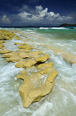Waves at shoreline, Cousin Island, Seychelles  -  Wil Meinderts/ Buiten-beeld