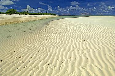 Ripples in the sand at the shoreline, Cosmoledo Atoll, Seychelles  -  Wil Meinderts/ Buiten-beeld