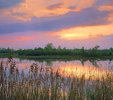Sunrise, Hillman Marsh, Ontario, Canada  -  Tim Fitzharris