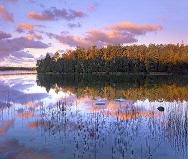 Cyprus Lake, Bruce Peninsula National Park, Ontario, Canada  -  Tim Fitzharris