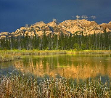 Miette Range and Talbot Lake, Jasper National Park, Alberta, Canada  -  Tim Fitzharris
