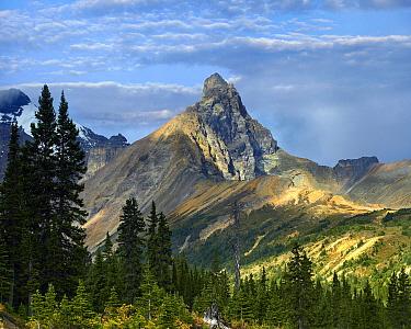Hilda Peak, Icefields Parkway, Banff National Park, Alberta, Canada  -  Tim Fitzharris