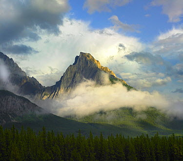 Opal Range surrounded by fog, Kananaskis Country, Alberta, Canada  -  Tim Fitzharris