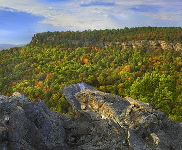 Petit Jean State Park, Arkansas  -  Tim Fitzharris