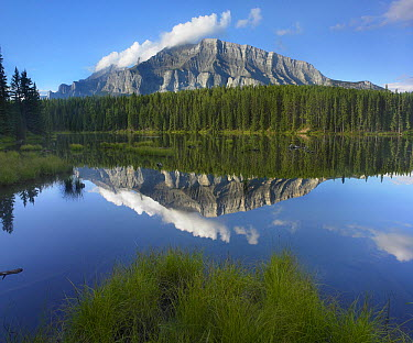 Mount Rundle, Johnson Lake, Banff National Park, Alberta, Canada  -  Tim Fitzharris