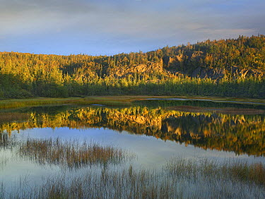 Pond, Pukaskwa National Park, Ontario, Canada  -  Tim Fitzharris