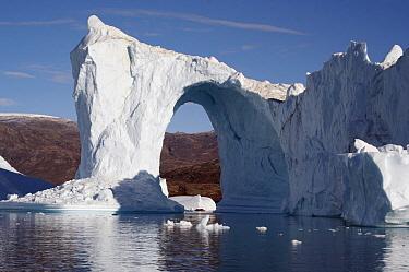 A large portal in an iceberg, Scoresby Sund, Greenland  -  Arjen Drost/ Buiten-beeld