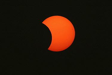 Solar eclipse, Grevenbicht, Netherlands  -  Ran Schols/ Buiten-beeld