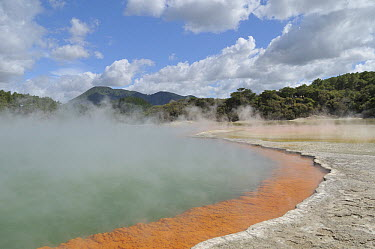 Champagne Pool, volcanic lake has constant 74 degree Celsius water including minerals gold, silver mercury, sulphur, and arsenic, Wai-O-Tapu Thermal Wonderland, Rotorua, North Island, New Zealand  -  Natalia Paklina/ Buiten-beeld
