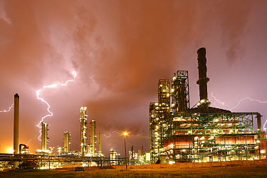 Thunderstorm and lightning crashes above petrochemical industry in harbor, Antwerp, Belgium  -  Wouter Pattyn/ Buiten-beeld
