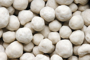 Saltpeter granules used as fertilizer, Zuidland, Netherlands  -  Nico van Kappel/ Buiten-beeld
