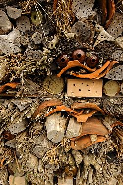 Insect shelter called a 'Bug Hotel', Texel, Netherlands  -  Dirk-Jan van Unen/ Buiten-beeld